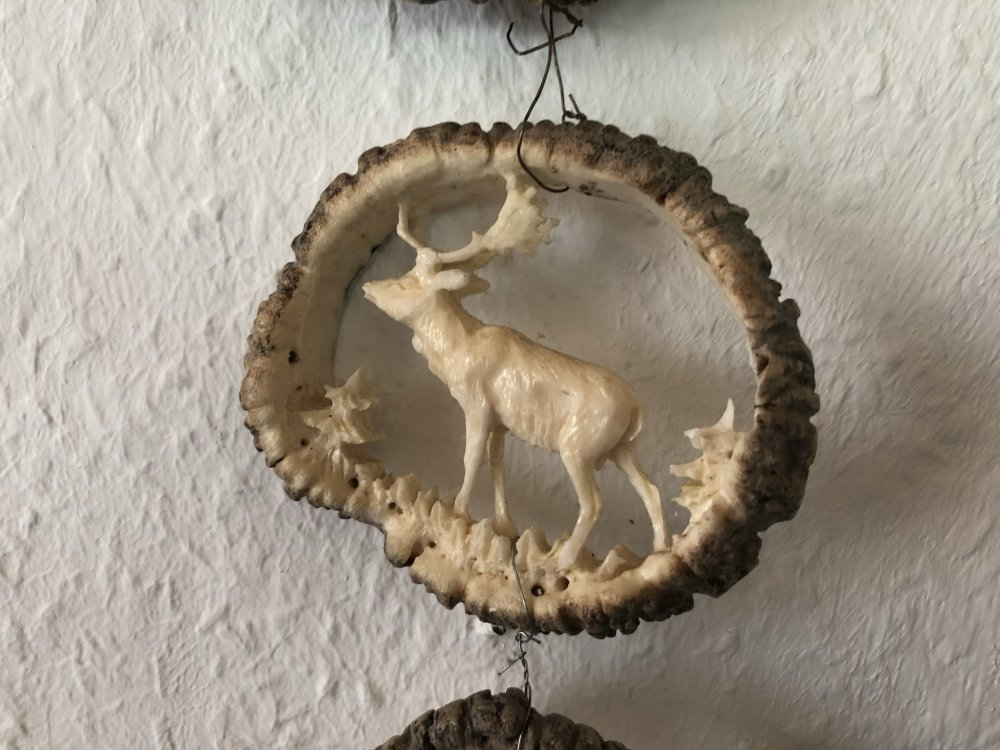 Horn (6)