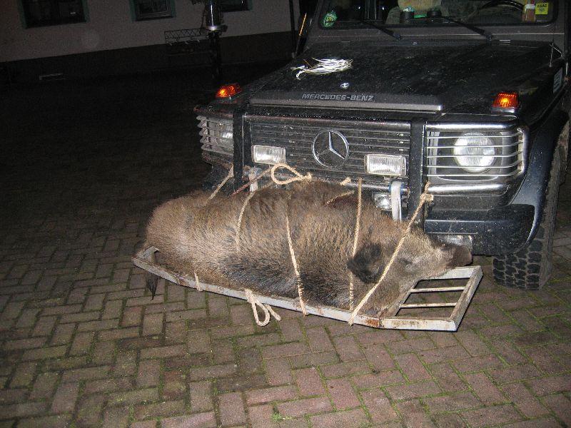 Wild Aufbrechwagen (8)