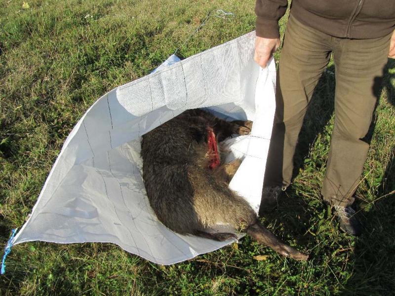 Wildschleppe als Wildtransporttasche (24)